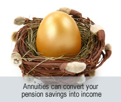 Annuity; income provider
