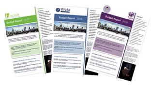 Personalised Budget Reports for IFAs