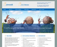 Financial Website Design for IFAs
